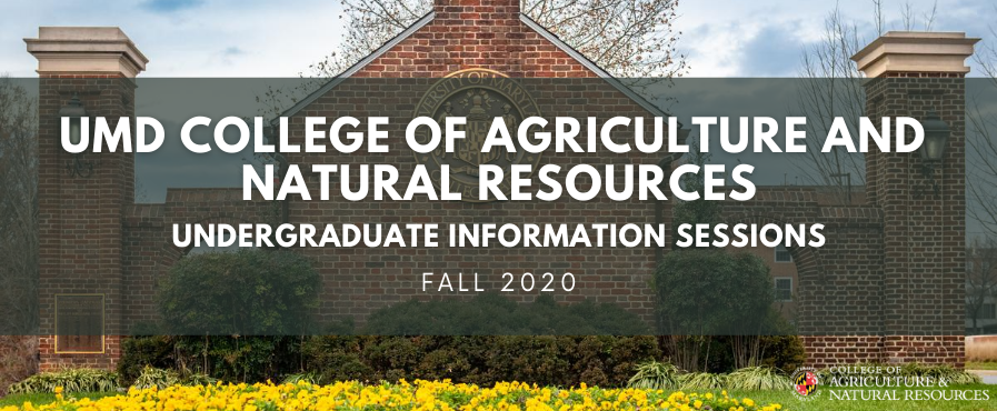 Fall Information Sessions Banner